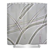Wool Hair Shower Curtain