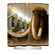 Wooly Mammoth Shower Curtain