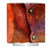 Wrap Shower Curtain