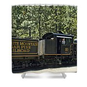 Wslc Shay Shower Curtain