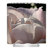 Wwii Memorial Rose Shower Curtain