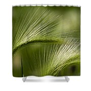 Wyoming Grassess Shower Curtain