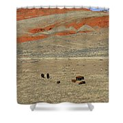 Wyoming Red Cliffs And Buffalo Shower Curtain