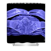 X-ray Of A Crab Shower Curtain