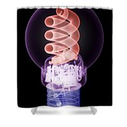 X-ray Of Energy Efficient Light Shower Curtain