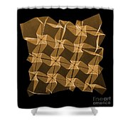 X-ray Of Mathematical Origami Shower Curtain
