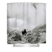 Yak In The Himalaya Shower Curtain