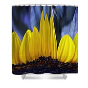 Florida's State Wildflower Shower Curtain