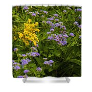 Yellow And Violet Flowers Shower Curtain