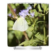 Yellow Butterfly Feeding On Violet Flower Shower Curtain