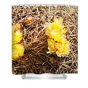 Yellow Cactus Flowers Shower Curtain