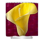 Yellow Calla Lily Red Mat Shower Curtain