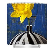 Yellow Daffodil In Striped Vase Shower Curtain