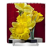 Yellow Daffodils In Checkered Vase Shower Curtain