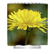 Yellow Flower And Bokeh Shower Curtain