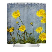 Yellow Flower Blossoms Shower Curtain