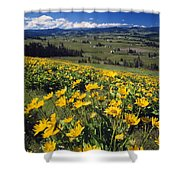 Yellow Flowers Blooming, Hood River Shower Curtain