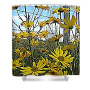 Yellow Flowers By The Roadside Shower Curtain