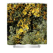 Yellow Flowers On Tree Shower Curtain