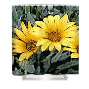 Yellow Gazanias Shower Curtain