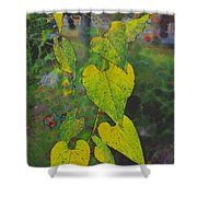 Yellow Heart Leaves IIi Photoart Shower Curtain