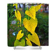 Yellow Heart Leaves  Photoart I Shower Curtain