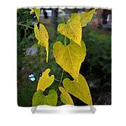 Yellow Heart Leaves Photoart II Shower Curtain
