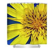 Yellow Heart Shower Curtain