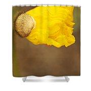 Yellow Icelandic Shower Curtain