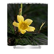 Yellow Jessamine Shower Curtain