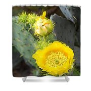 Yellow Lace Unveiled Shower Curtain