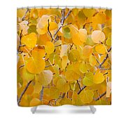 Yellow Leaf Patterns Shower Curtain