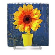 Yellow Mum In Yellow Vase Shower Curtain