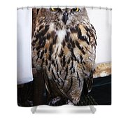 Yellow Owl Eyes Shower Curtain