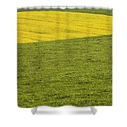 Yellow Rapeseed Growing Amongst Green Shower Curtain
