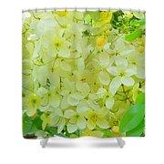 Yellow Shower Tree - 5 Shower Curtain