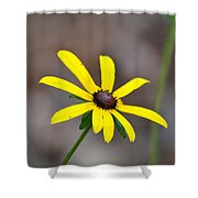 Yellow Star Shower Curtain