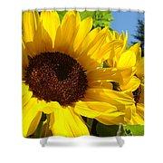 Yellow Sunflowers Art Prints Summer Sunflower Shower Curtain