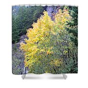 Yellow Trees Shower Curtain