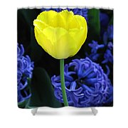 Yellow Tulip And Hyacinth Shower Curtain