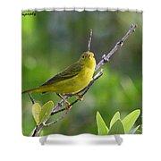 Yellow Warbler Shower Curtain