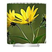 Yellow Wildflower 2 Shower Curtain