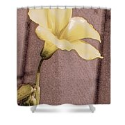 Yellow Wood Sorrel Shower Curtain