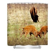 Yellowstone Bison Shower Curtain by Ellen Heaverlo