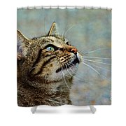 Yes I Am A Pretty Kitty Shower Curtain