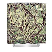 Yet To Spring Shower Curtain