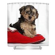 Yorkipoo Pup Shower Curtain