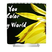 You Color My World Shower Curtain