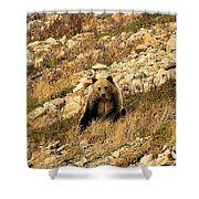 You Want My Photo? Shower Curtain