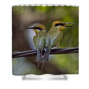 You Watch My Back And I Watch Yours V2 Shower Curtain
